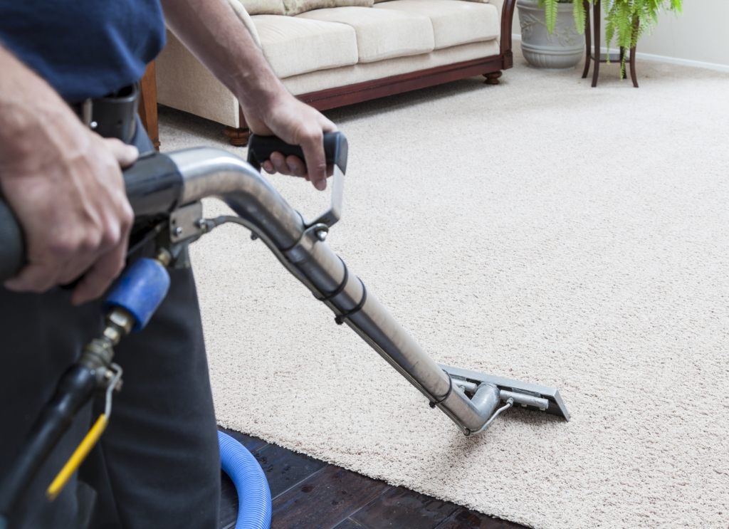 Carpet Cleaning & Shampooing Service Hudson County NJ